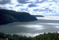 a Bay of water wtih hills and forest surrounding - photographed from a lookout point