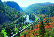train gong through valley with red and green trees